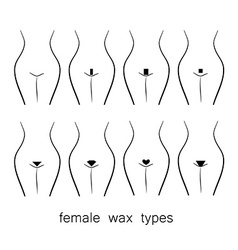 female wax types vector image