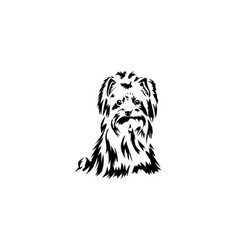 sketch funny dog yorkshire terrier breed sitting vector image