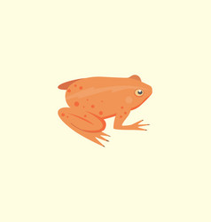 frog cartoon isolated vector image vector image