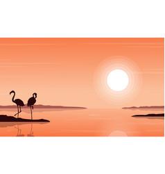 silhouette of flamingo on beach scenery vector image vector image