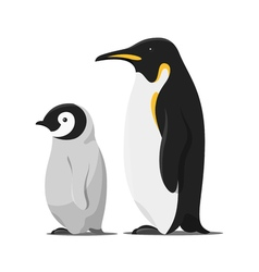 Cartoon style of penguins vector
