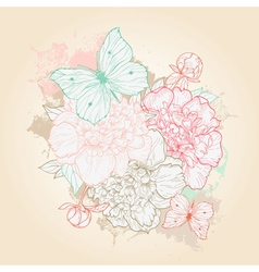 hand drawn with peony and butterfly vector image