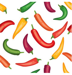 Seamless chile pepper pattern vector
