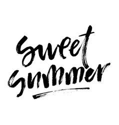 summer brush lettering composition vector image