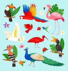 Tropical birds exotic parrot or flamingo vector