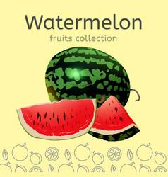 watermelon image vector image