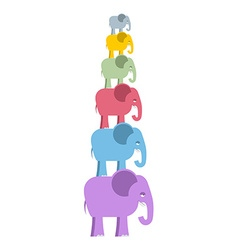 Pyramid color elephants colorful cute animals of vector