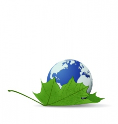 globe on leaf vector image vector image
