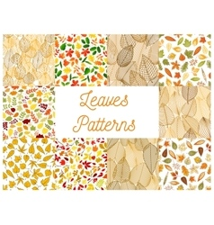 Autumnal fallen leaves seamless patterns set vector image