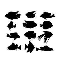 Aquarium exotic fish silhouette collection vector