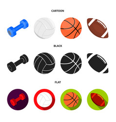 blue dumbbell white soccer ball basketball vector image