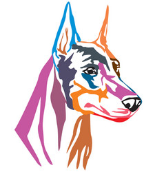 colorful decorative portrait of dog dobermann vector image
