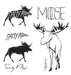 Moose and Lettering Monochrome vector image vector image