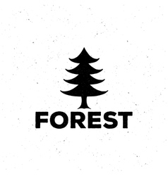 logo or emblem of a black fir-tree grung style vector image vector image