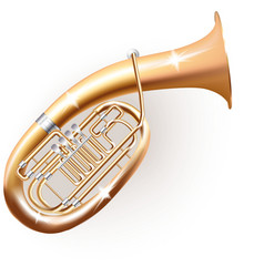 Classical Wagner tuba vector image vector image