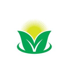 leaf sunset eco logo vector image