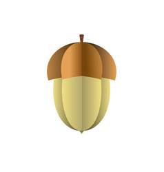 acorn of paper on white background vector image