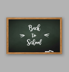 back to school text on chalkboard vector image