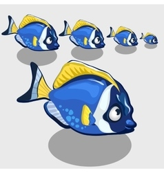 Blue tropical fish isolated icon set vector image
