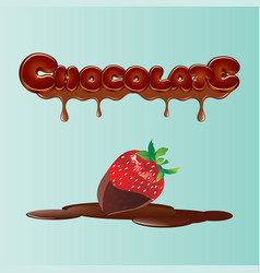 chocolate 01 vector image