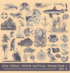 collection nautical engravings vector image