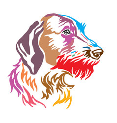 colorful decorative portrait of dog german vector image