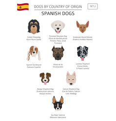 Dogs by country of origin spanish dog breeds vector