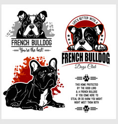 french bulldog - set for t-shirt logo vector image