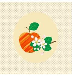 Nature apple fruit pattern blossom vintage vector image