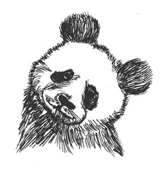 Panda symbol of china vector