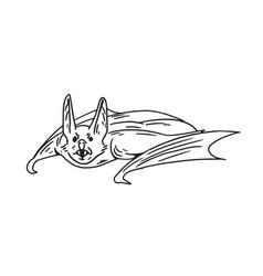 Spooky flying bat with fangs halloween sketch vector