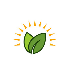 sun green leaf logo vector image