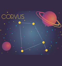 the constellation corvus vector image