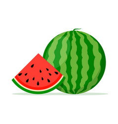 watermelon background bite icon melon food vector image