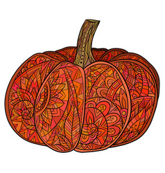 colored doodle of pumpkin with a boho vector image vector image