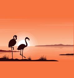 silhouette flamingo on lake landscape vector image vector image
