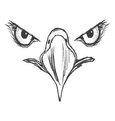 Eyes of eagle vector