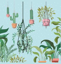 Houseplants in macrame hangers garden scene vector
