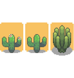 set of cactus in pixel style vector image