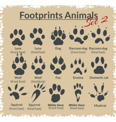 Footprints Animals - set vector image