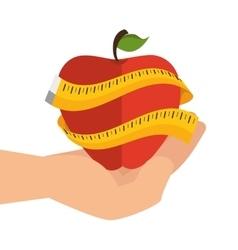 apple fresh fruit isolated vector image