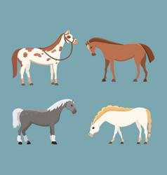 Cute horses in various poses design vector