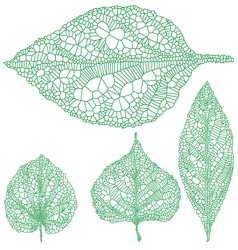 Set of detailed green leaves vector