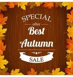 Autumn special sale typography poster with colored vector image