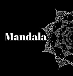 flower mandala design elements vector image