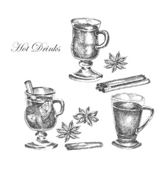 hand drawn ink sketch of mulled wine vector image