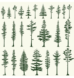 Set stylized pine silhouettes vector