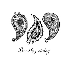 Three doodle paisley elements vector image