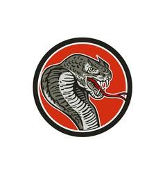 Cobra Viper Snake Circle Retro vector image