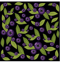 pattern with blueberries on black vector image vector image